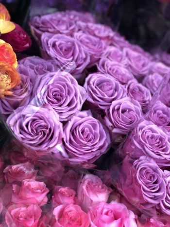 ヨーロッパ 〜花に囲まれた暮らし〜