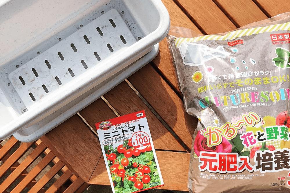 ミニトマト栽培準備
