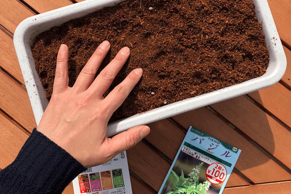 ミニトマト栽培準備中、土いれ